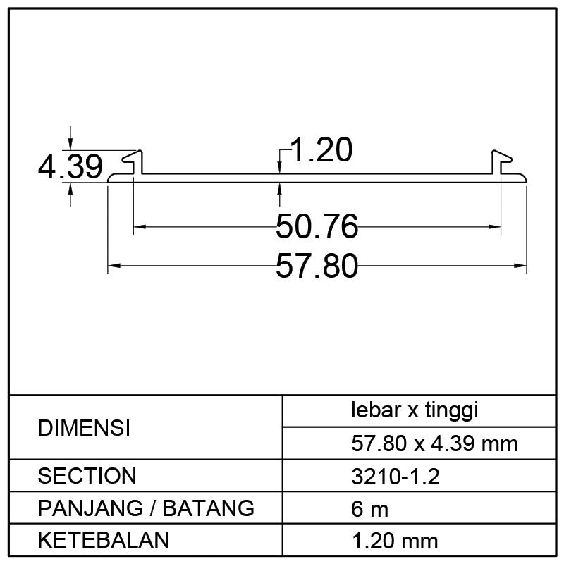 POP RATA (57.80 x 4.39)mm